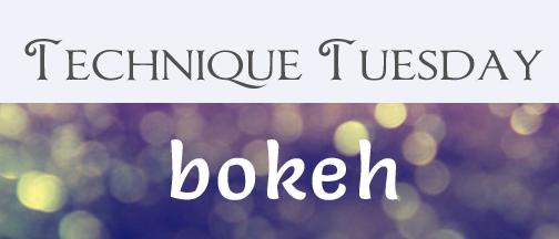 technique-tuesday-bokeh
